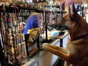 Thrift Store Staff